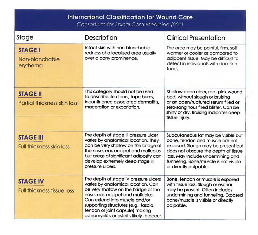 Picture of International Classification for Wound Care chart